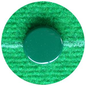 chapa-verde